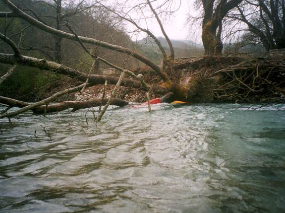 High Water, Strainers, and Drowning